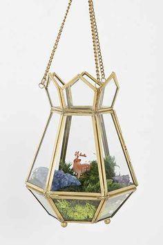 hanging terrarium // $19.99