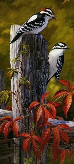 Beautiful painting of birds and nature