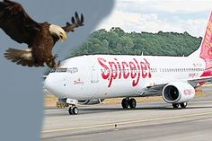 Eagle hits spice jest aircraft in gannavaram airport
