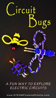 Original Circuit Bugs - Circuit building and tinkering Circuit Bugs – A super cute craft with circuit work.Circuit Bugs – A super cute craft with circuit work. 4th Grade Science, Stem Science, Physical Science, Science Fair, Science Lessons, Teaching Science, Science For Kids, Technology Lessons, Robots For Kids