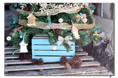 Home tweet home themed Christmas tree ideas decorating ideas