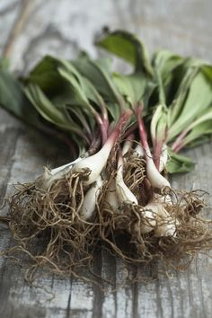 Pickled ramps | Foodie | Pinterest