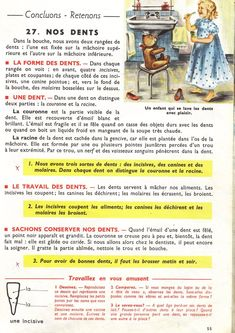 Manuels anciens: Orieux, Everaere, Leçons de choses CE (1952) French Expressions, Study French, Learn French, Science, Home Schooling, French Language, Biology, Teaching, Languages
