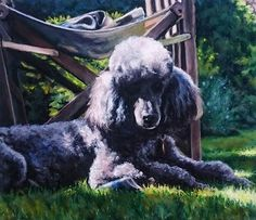 """William the poodle  Mixed media on paper 20"""" x 18"""" When I'm not painting wild and colourful semi abstracts I'm working on pet portrait commissions. DM to commission me to paint your beloved pet."""
