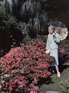~ Raleigh Vintage ~: 1920s Color Photography: Clifton Adams, part II