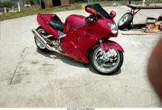 2001 Honda CBR 1100 XX Super Blackbird