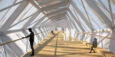 Andreas Schnubel / Structural Design / Footbridge Neckarbogen
