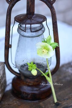 Lantern |Pinned from PinTo for iPad|