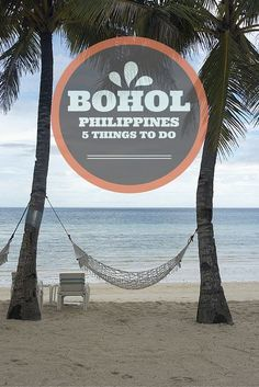 5 things to do in Bohol and Panglao, two amazing and diverse islands in the Philippines! From beaches to tarsiers, chocolate hills and more!