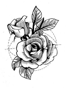 roses,  flowers,  geometry,  graphic art by Evel Qubiak