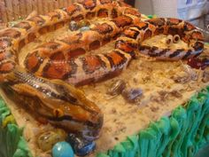 This is the cake I made for my great-niece's Reptile Birthday Party. I've gotten more comments on this than on the 100+ wedding cakes I've made in the last couple of decades. Since making these creations is my HOBBY, I call it 'icing scupture' instead of cake decorating!