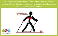 23 Best Nordic Walking Benefits Images Nordic Walking Walking