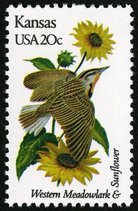 Kansas State Bird - Western Meadowlark AND Kansas State Flower - Helianthus or Wild Native Sunflower Kansas State Bird, State Birds, Flower Catalogs, Commemorative Stamps, Flower Stamp, Vintage Stamps, Stamp Collecting, Flowers, Collections