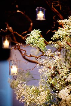 Baby's Breath in Trees - Nice - with lighting... -   A NEW LEAF WEDDING PHOTOS A NEW LEAF WEDDING IMAGES PICTURES PHOTOGRAPHY ARTISTIC CHICAGO WEDDING PHOTOGRAPHER