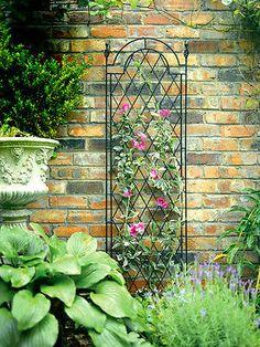 Tom Chambers Spiral Trellis   Spiral Garden Trellises | EBay £24.99