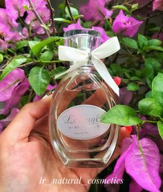 Aloe Vera, Find Picture, Natural Cosmetics, Health And Beauty, Beauty Products, Glass Vase, Perfume Bottles, Cosmetics, Perfume Bottle