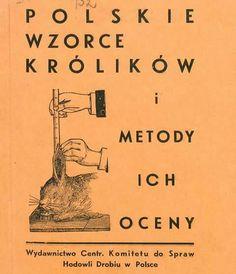 Stare książki o wzorcach królików (Trybulski 1934) / Polona