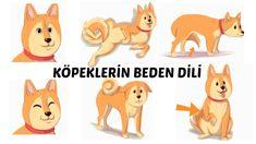 KÖPEKLERİ ANLAMANIN 17 YOLU (KÖPEKLERİN BEDEN DİLİ) Scooby Doo, Winnie The Pooh, Disney Characters, Fictional Characters, Family Guy, Guys, Winnie The Pooh Ears, Fantasy Characters, Sons