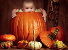 Toddlers love to help their parents with cooking. Cooking with toddlers lays the foundation for valuable life skills and helps develop healthy eating habits. Large Pumpkin, Baby In Pumpkin, Baby First Halloween, Girl Halloween, Milestone Pictures, Thanksgiving Pictures, October Baby, Pumpkin Photos, Activities For Boys