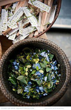 botanical-natural-wedding-green-kwazulu-natal_043 alternatives to petals via theprettyblog.co.za