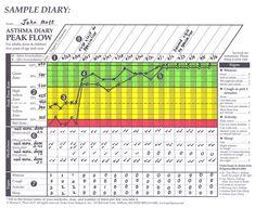 Beautiful Slikovni Rezultat Za Peak Flow Chart