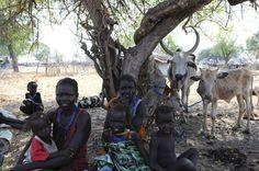 Flüchtlinge in Pibor: Zehntausende Menschen im Südsudan haben wegen der brutalen Kämpfe ihr Zuhause verlassen. African Tribes, The Republic, Capital City, Kenya, Waves, Country, Children, Pictures, Animals