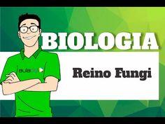 Biologia - Reino Fungi - YouTube