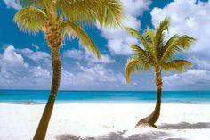 Coco Point, Barbuda. Ridiculously soft sand, so I hear.