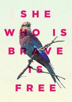 bravely free