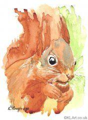 © KLArt.co.uk Shadow Tail Red Squirrel British Wildlife, Red Squirrel, Woodland Creatures, Mammals, Watercolor Art, Buy Art, Fine Art America, Cute Pictures, Fine Art Prints