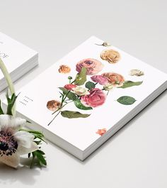 Venamour - Wildflower Collection / via Miss Moss #stationary