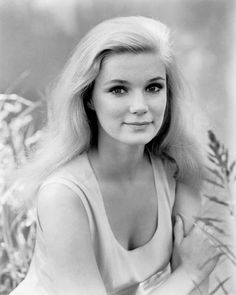 Actress Yvette Mimieux turns 75 today - she was born in 1942 - many an older and middle Boomer well recall when she played Richard Chamberlain's love interest on an arch of Dr. Kildare in the early - her character was a surfer named Tyger. Golden Age Of Hollywood, Vintage Hollywood, Classic Hollywood, Hollywood Stars, Yvette Mimieux, Donna Mills, The Time Machine, Old Movie Stars, Female Actresses