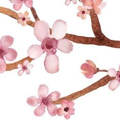 Spring is in the air..  #spring #watercolor #flower #floral #pink #paint #print #pretty #clipart #etsy #sandragraphicdesign #cherryblossom #cherry #blossom #design #illustration