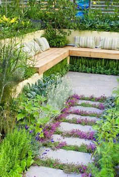 DiyAndGardenings: Outdoor entertainment area slowing being taken over by the garden. #Sit #plants, #sit! ;3