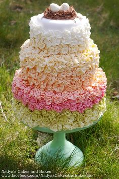 Prettiest cake I have ever seen!!