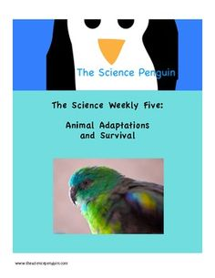 Science Weekly Five for Animal Adaptations