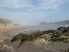 Robberg Nature Reserve, South Africa | One Footprint On The World Port Elizabeth, Garden Route, Nature Reserve, South Africa, Eco Friendly, Activities, Footprint, World, Beach