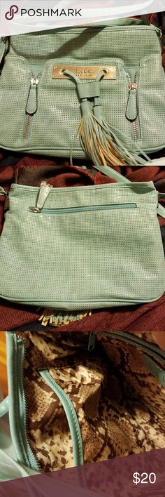 Light Turquoise cross body bag Nwot Bag with front pocket, back zippered pocket, 2pockets inside 1 zips Nicole by Nicole Miller Bags Crossbody Bags