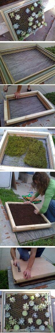 a living succulent frame