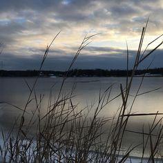 At the beach  #nofilter #novembersun #morninglight #sunlightonice #natureshot #freezingsea #clouds #skylover #naturelover #reeds #shadowandlight #seaside #southoffinland #thisisfinland #aamukävelyllä #rannalla #riite #merijäätyy #valo #långvik #langvikhotel #thankgoditslångweekend #weekendfortwo  http://www.langvik.fi/