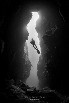 Gorgonias y cuevas del Caletón de La Matanza
