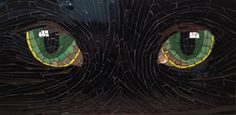 mosaic of the eyes of a black cat
