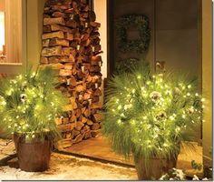 light front door planters