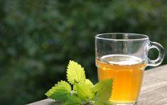 Tisana depurativa fai da te per l'intestino - La tisana depurativa è una ricetta per creare un rimedio fai da te per depurare l'intestino e tutto l'organismo.