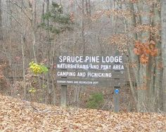 Weddings in North Carolina: Economical wedding site: Spruce Pine Lodge, Bahama NC