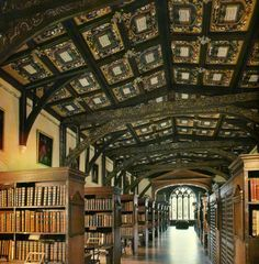 The Bodleian Library, Oxford. It has 120 miles of occupied shelving, 29 reading rooms and 2,490 places for readers. Sounds exactly like my kind of place <3