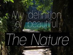 Read and share our collection of 250 Beautiful Caption for Nature Photography. Find more at The Quotes Master, a place for inspiration and motivation. Caption For Nature, Natural Beauty Quotes, The Beast Movie, Above The Clouds, Beauty Shots, Nature Quotes, World Of Color, Animal Quotes, Nature Pictures