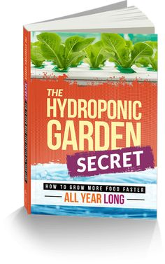Homegrown Hydroponics – The Tilled Garden Hydroponics System, Hydroponic Gardening, Gardening Tips, Hydroponic Growing, Backyard Coop, Chickens Backyard, Perfect Plants, Cool Plants, Container Plants
