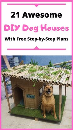21 Awesome DIY Dog Houses With Free Step-by-Step Plans - Herzlich willkommen Big Dogs, Cute Dogs, Dog House Plans, Funny Dog Photos, Cool Diy Projects, Wood Projects, Animal Projects, Dog Houses, Diy Stuffed Animals