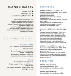 buy a resume template resume design - Microsoft Resume Template
